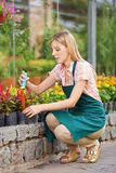Woman working in garden in spring Stock Images