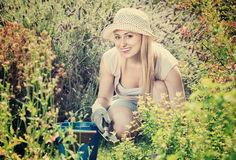 Woman working in garden using horticultural instruments on summe. Young blond smiling woman working in garden using horticultural instruments on summer day Royalty Free Stock Photo