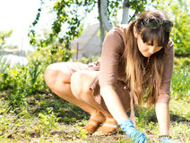 Woman working in her garden stock photos