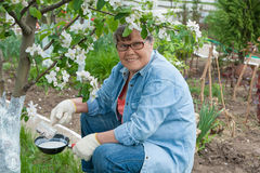 Woman working in her garden Royalty Free Stock Images