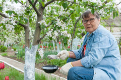 Woman working in her garden Royalty Free Stock Photography