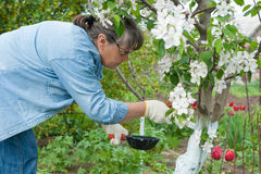 Woman working in her garden Royalty Free Stock Photos