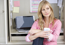 Woman Working In Home Office Stock Image