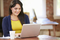 Woman Working At Laptop In Contemporary Office Royalty Free Stock Images