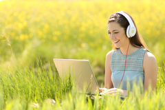 Woman working with a laptop in a field in summer Royalty Free Stock Photography