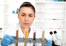 Woman working with a microscope in a lab. Stock Photos