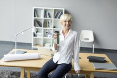 Woman working in the office Royalty Free Stock Images