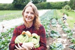Woman Working On Organic Farm Holding Produce. Portrait Of Woman Working On Organic Farm Holding Produce Royalty Free Stock Image