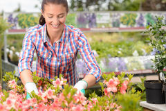 Woman working with potted flowers garden center Royalty Free Stock Photography