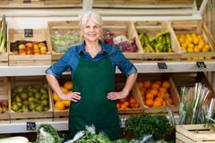 Woman working in small grocery store royalty free stock photos