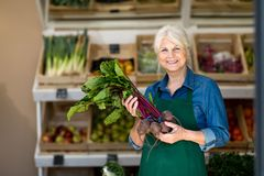 Woman working in small grocery store stock photo