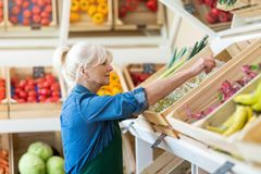 Woman working in small grocery store stock photography