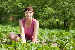Woman working in  vegetable garden. Young woman working in her vegetable garden Stock Photography