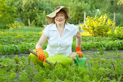 Woman working in  vegetable garden Royalty Free Stock Photography