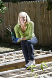 Woman working on vegetable garden in backyard Royalty Free Stock Photo