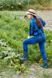 Woman working in the vegetable garden. Harvesting. Girl farmer with spade in the vegetable garden. Young woman harvesting beetroot on the field. Woman digging Royalty Free Stock Photography