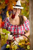 Woman working in vineyard Royalty Free Stock Photos