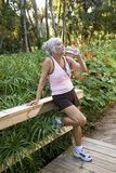 Woman in workout clothes drinking water in park Royalty Free Stock Photo