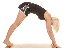Woman workout downward dog Stock Photography