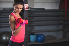 Woman workout with dumbbells Stock Image