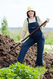 Woman works with animal manure Royalty Free Stock Photo