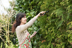 Woman works in garden Royalty Free Stock Image
