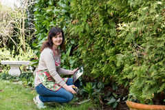 Woman works in garden Royalty Free Stock Images
