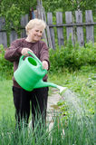 Woman works on a kitchen garden Royalty Free Stock Photo