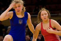 Woman wrestlers. royalty free stock images