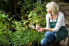 Woman writing on clipboard while examining plants Stock Photography
