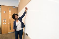 Woman Writing on Dry-erase Board Royalty Free Stock Photos