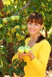 Woman wtih apples Royalty Free Stock Image
