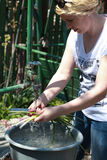 Woman in the yard washing manually the vegetable, green onion Stock Photography