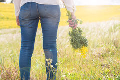 Woman in yellow field Stock Image