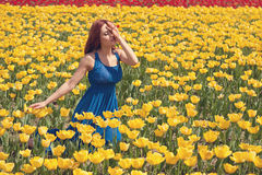 Woman in yellow flower field Royalty Free Stock Photo