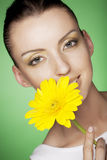 Woman with yellow flowers on green background Royalty Free Stock Photos