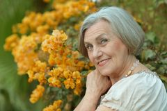 Woman with yellow flowers Royalty Free Stock Images