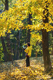 Woman in yellow jacket reads in autumn forest Royalty Free Stock Photography