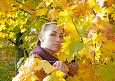 Woman and yellow leaves Royalty Free Stock Photo