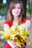 Woman with yellow  leaves Stock Images