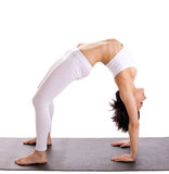 Woman in yoga asana - bridge pose isolated Royalty Free Stock Images