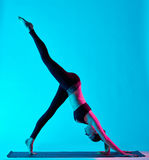 Woman yoga exercices Royalty Free Stock Image