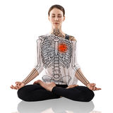 Woman in a yoga pose, with drawing skeleton. Over white background Stock Image