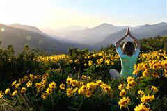 Woman in yoga pose among Sunflowers in meadows. Beautiful view of Cascade Mountains at sunrise.  Winthrop. Patterson Mountain. Seattle. Washington. United States Stock Photo