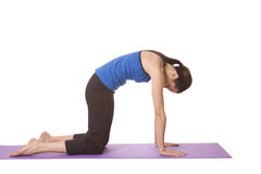Woman in Yoga Position Royalty Free Stock Images