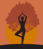 Woman in Yoga tree pose Royalty Free Stock Photo