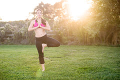 Woman yoga Stock Photography