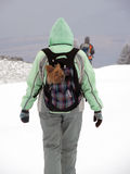 Woman with Yorkshire Terrier in Snowy Mountain Stock Photography