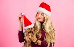 Woman and yorkshire terrier wear santa hat. Girl attractive blonde hold dog pet pink background. Celebrate christmas. With pets. Reason love christmas with pets royalty free stock photo