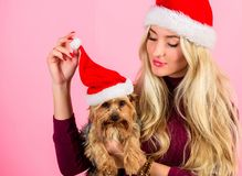 Woman and yorkshire terrier wear santa hat. Girl attractive blonde hold dog pet pink background. Celebrate christmas. With pets. Reason love christmas with pets royalty free stock photos